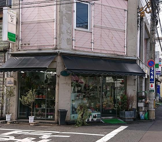 鳥取市 弥生町 花屋