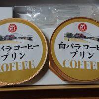 鳥取のお土産 白バラコーヒープリンの値段はいくら?