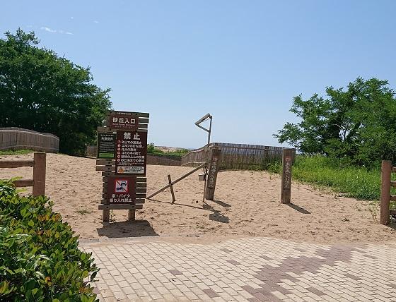 砂の美術館 鳥取砂丘 徒歩